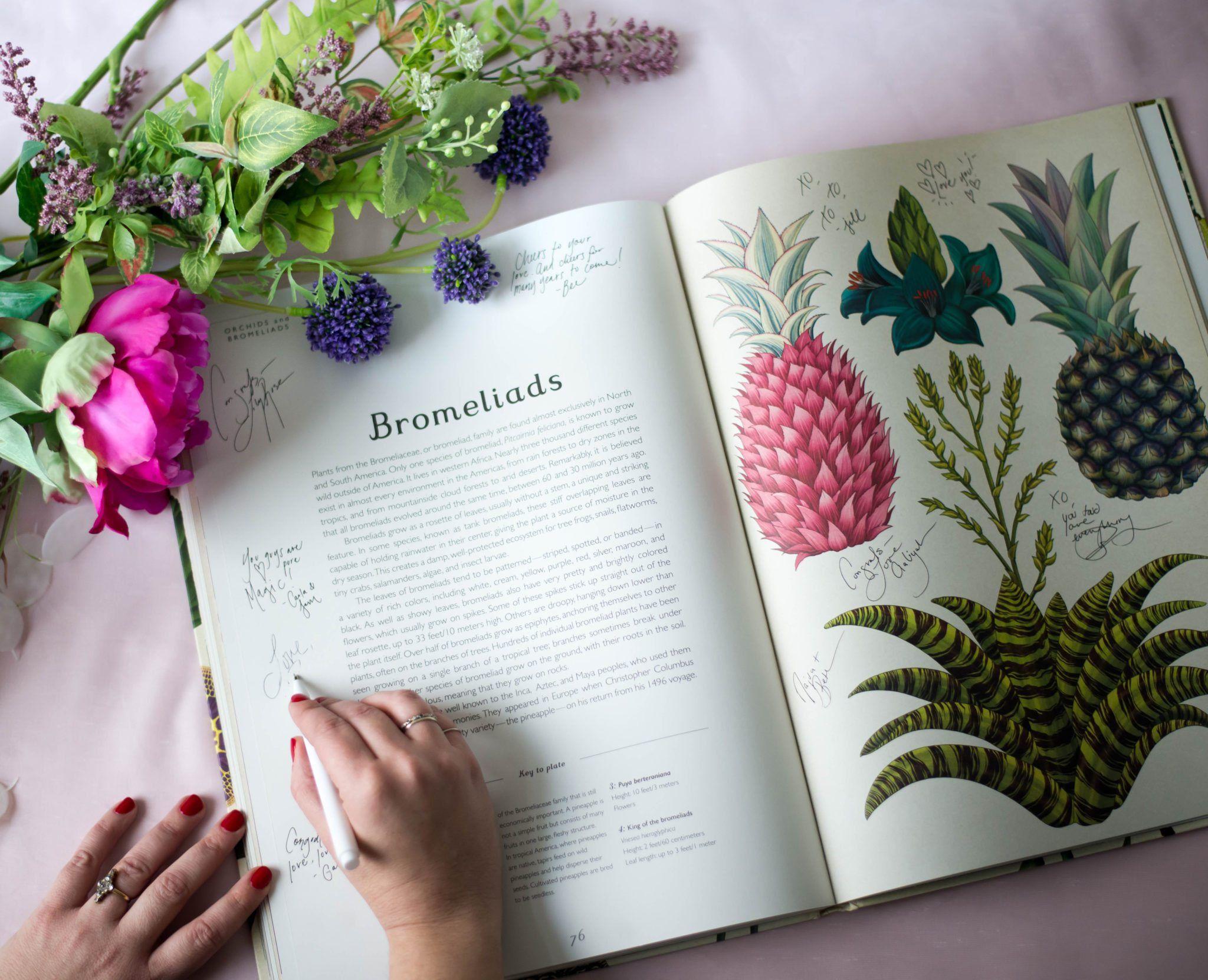 Wedding Guest Book Ideas  Wedding Accouterments  Pinterest