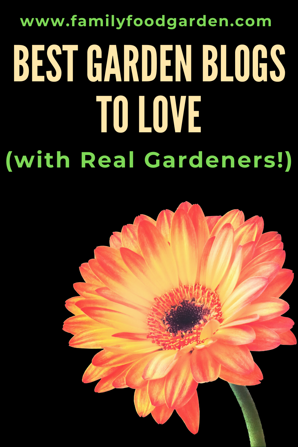 Here are the best garden blogs to love with real gardeners. Some of these garden blogs are vegetable gardeners, others flower gardeners and some permaculture. FInd more details on this pin! #permaculture #garden #gardeningtips #gardenblog #flowergardening #vegetablegardening