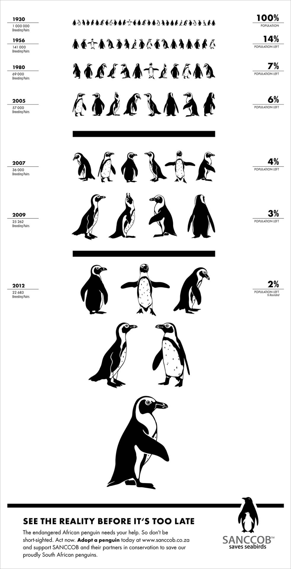 Wiinterrr S Day One Last Reminder On Penguinawarenessday 2015 A Penguin Eye Chart Save The Penguin African Penguin Penguins