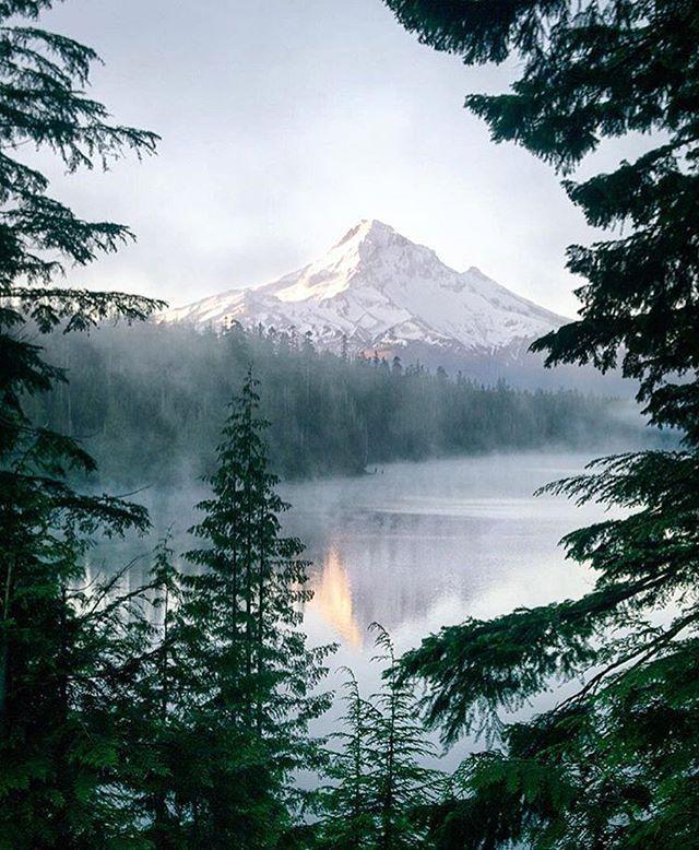 Mount Hood #Oregon  Photo: @jess.wandering #wildernessculture