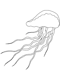 Image Result For Jellyfish Outline Jellyfish Outline Outline Images Jellyfish