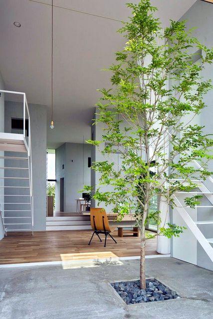 Un tronc d 39 arbre en d co int rieur arbre d co pinterest arbre int rieur maison avec patio - Arbre deco interieur ...