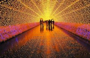Betoverende lichtshow in Japanse botanische tuin