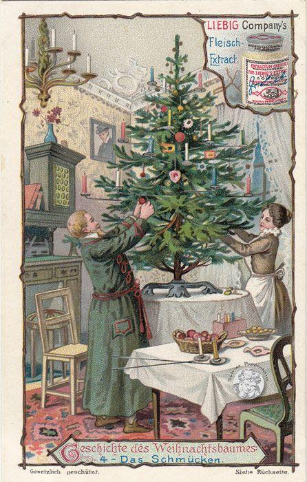 Geschichte Weihnachtsbaum.Geschichte Vom Weihnachtsbaum Serie 499 656 1901