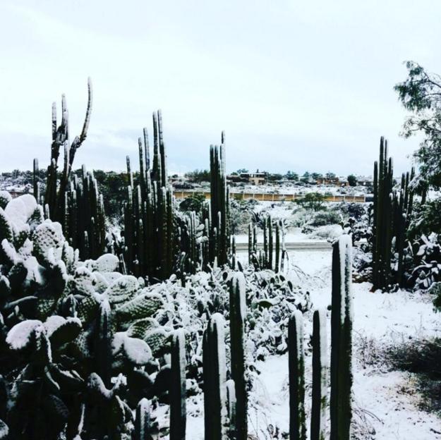 Repentinamente, los pueblos mágicos se volvieron más mágicos.   17 Hermosas imágenes de las nevadas en México que te dejarán frío