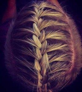 top view manbraids barbershop photograph  mens braids