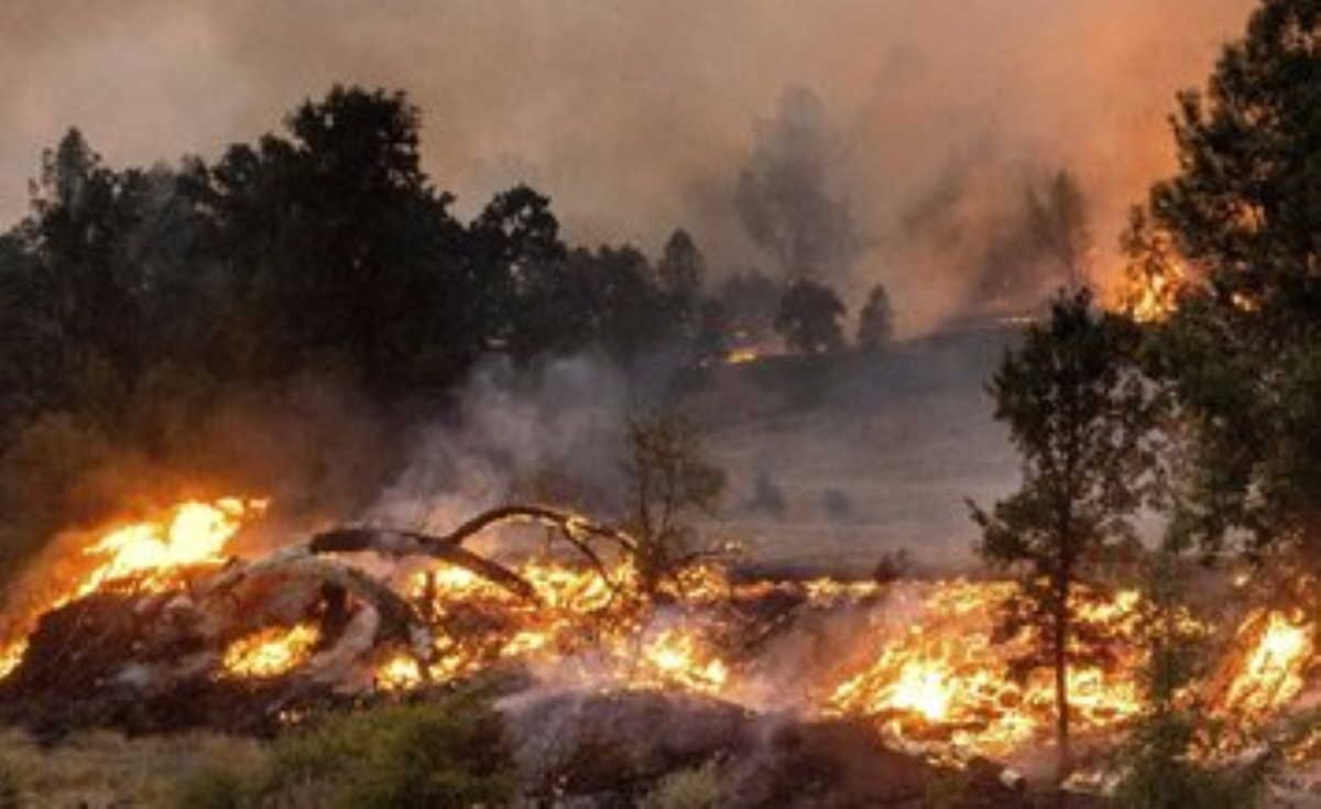Wildfires In California Burn Over 4 Mln Acres In 2020 Acre Napa Valley Wineries California