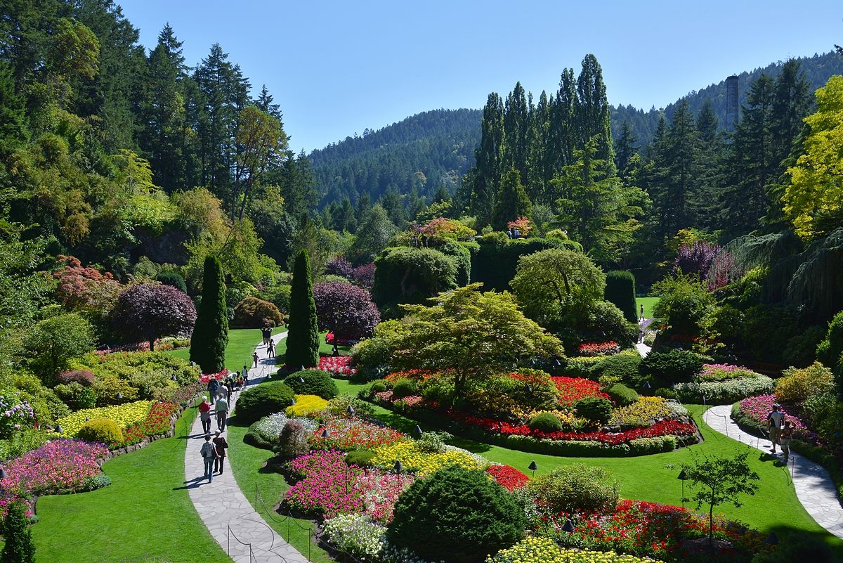 The butchart gardens is one of the top tourist attractions in the butchart gardens is one of the top tourist attractions in victoria british columbia and sciox Gallery