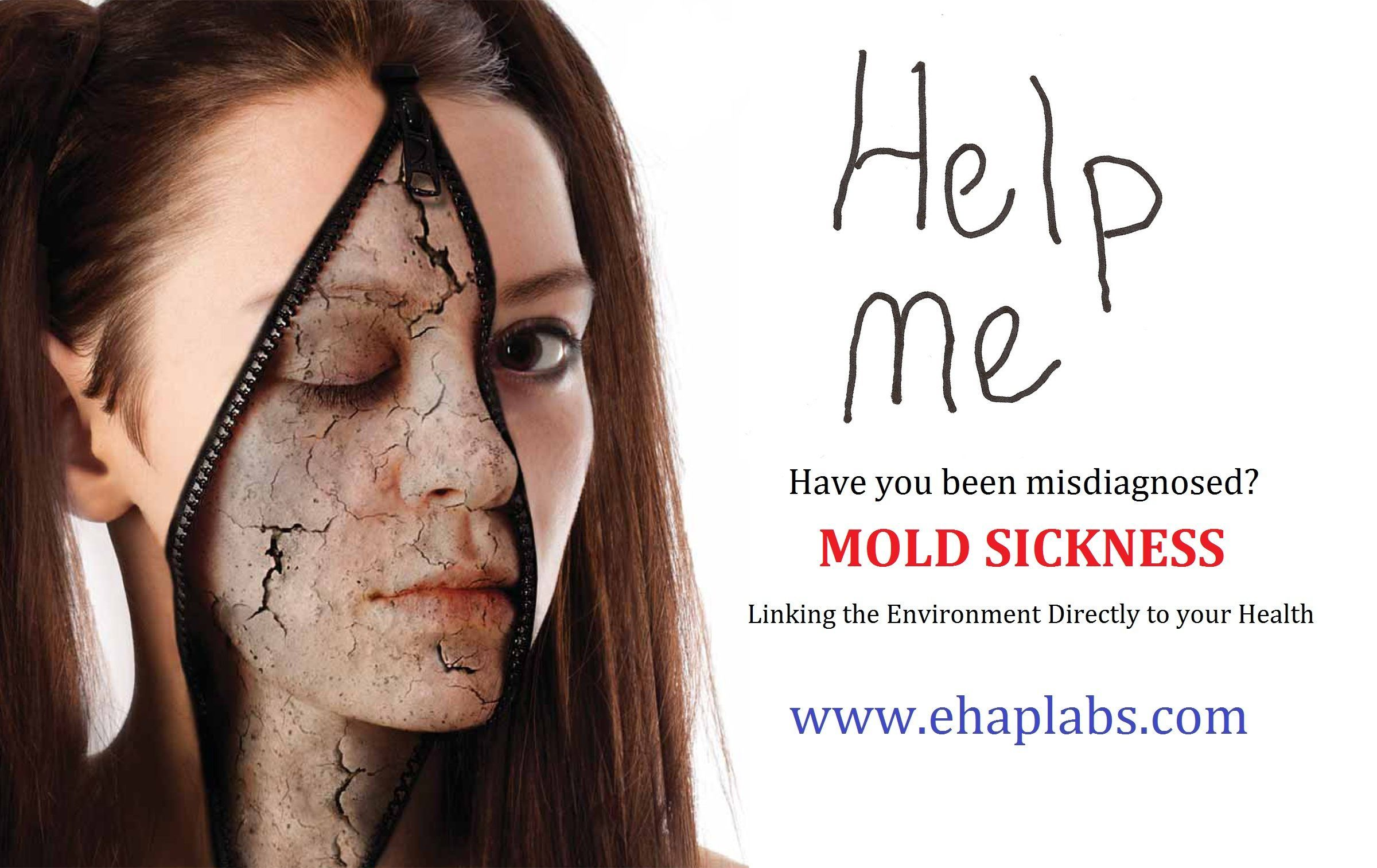 Mold Sickness Treatment Doctors Who Have Experience In The Right For Illness