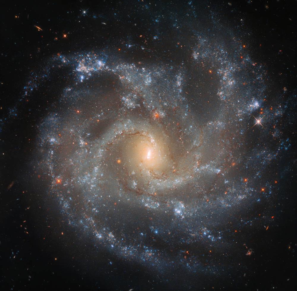 Hubble Spots Galaxy's Dramatic Details | NASA
