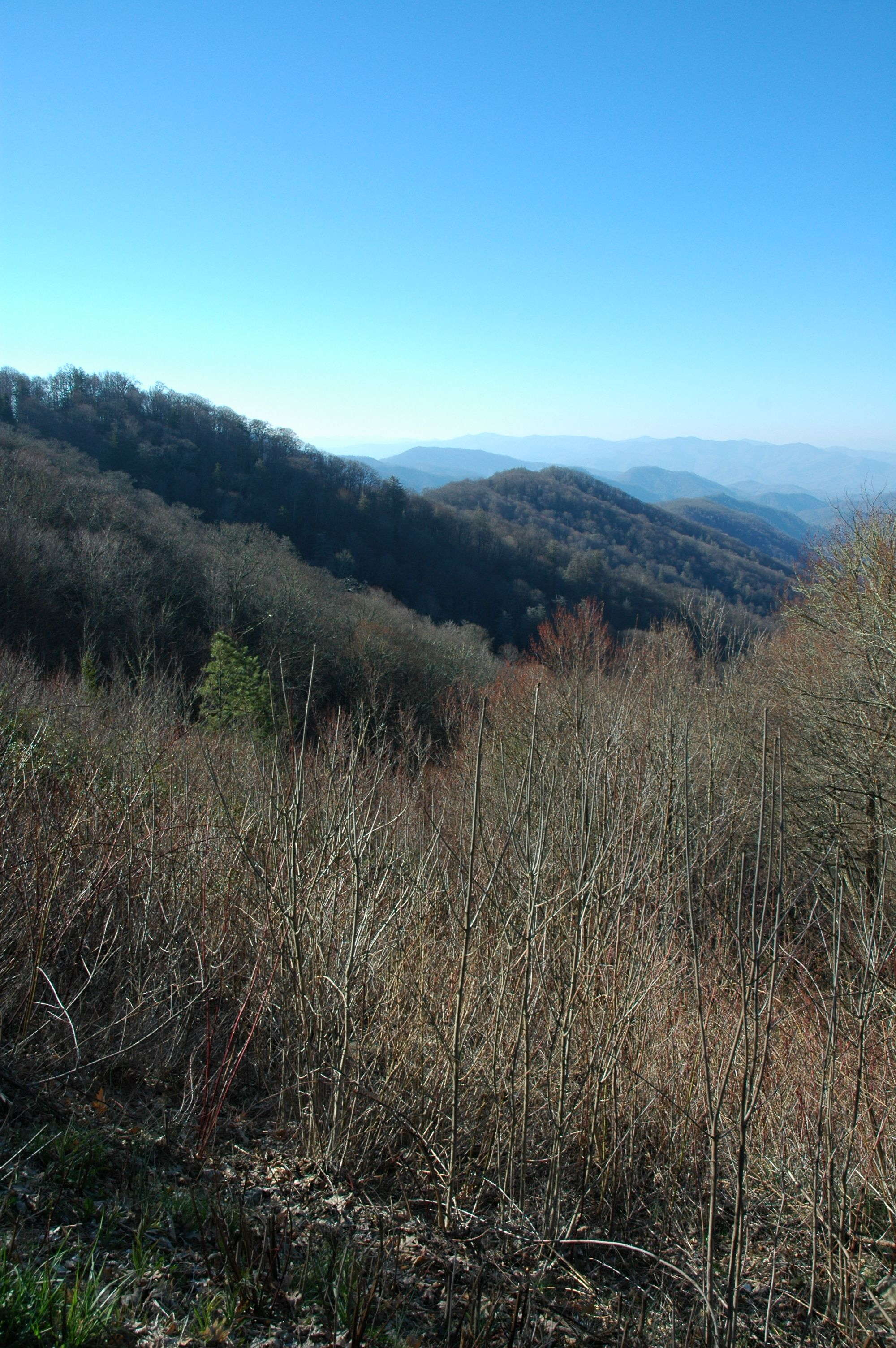 Blue skies over the Smoky Mountains
