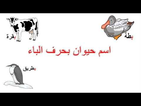 لعبة للاطفال انسان حيوان Educational Games For Kids Games For Kids Educational Games