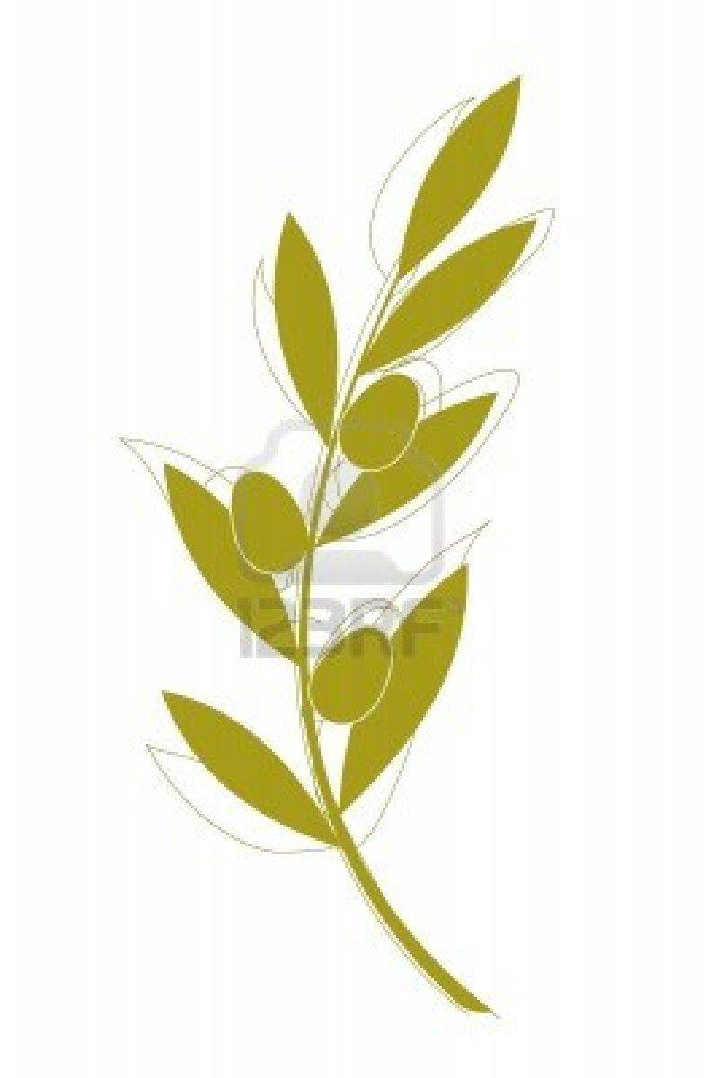 olive branch | Ezra | Pinterest | Art clipart and Vector art