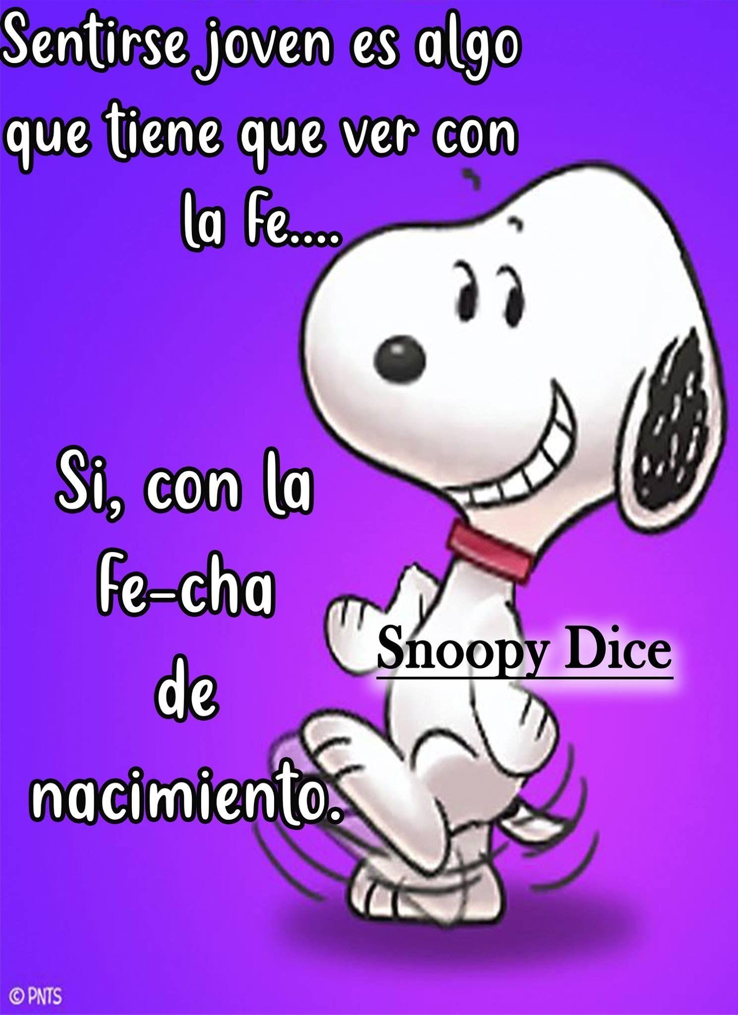 Pin De Maria H En Graciosos Frases De Snoopy Frases Bonitas Frases Bonitas De Motivacion