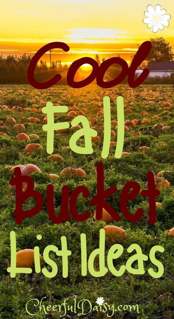 Cool fall bucket list ideas for teens. Fall fun for kids. #fallbucketlist