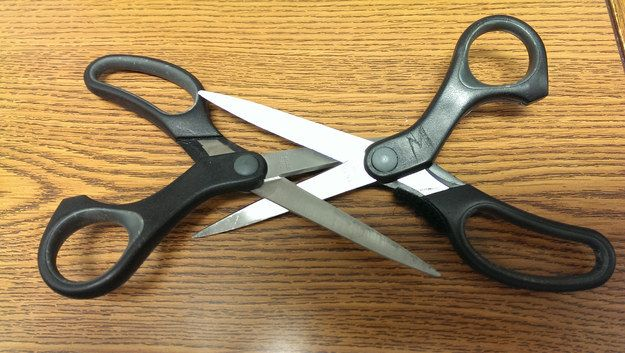 Lesbians doing the scissors