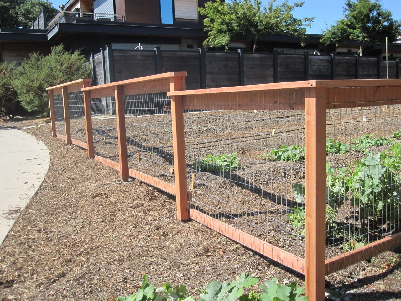24 WELDED WIRE Arbor Fence Inc a Diamond Certified Company