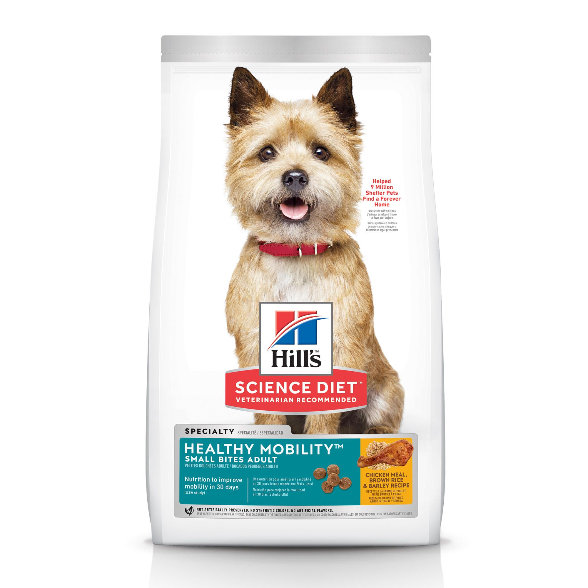 Satisfy Your Adventurous And Active Pup With Hill S Science Diet