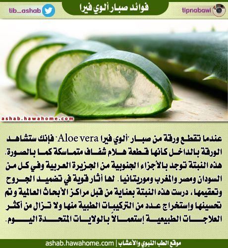 فوائد نبات الصبار الطب النبوي والاعشاب Health Advice Health Smoothies