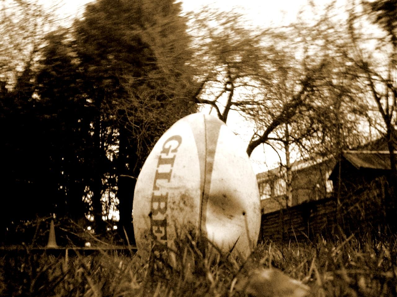 Flat Rugby Ball by exhumed.deviantart.com on @deviantART