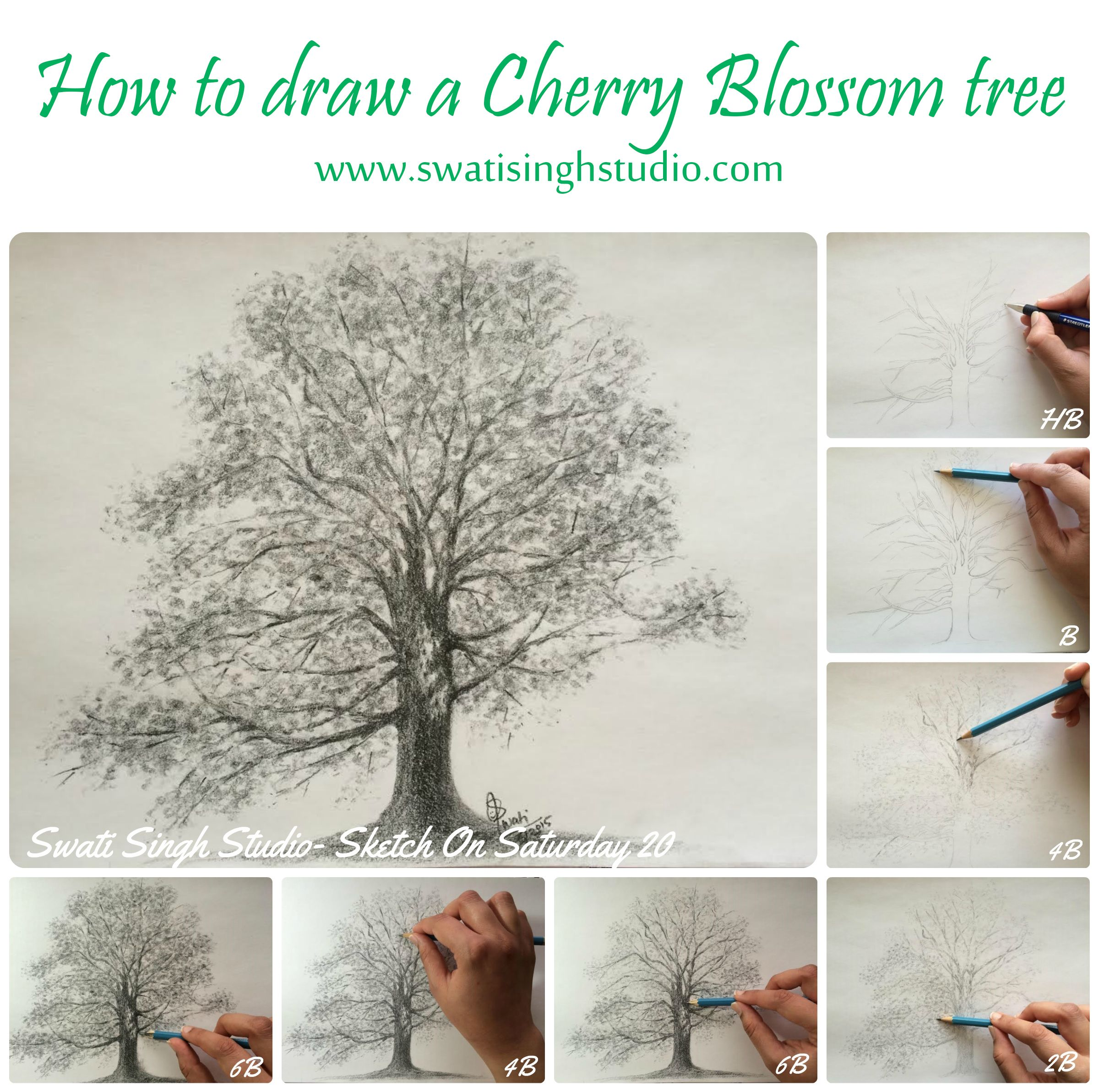 Swati Singh Art Blog Tree Drawings Pencil Tree Drawing Cherry Blossom Tree