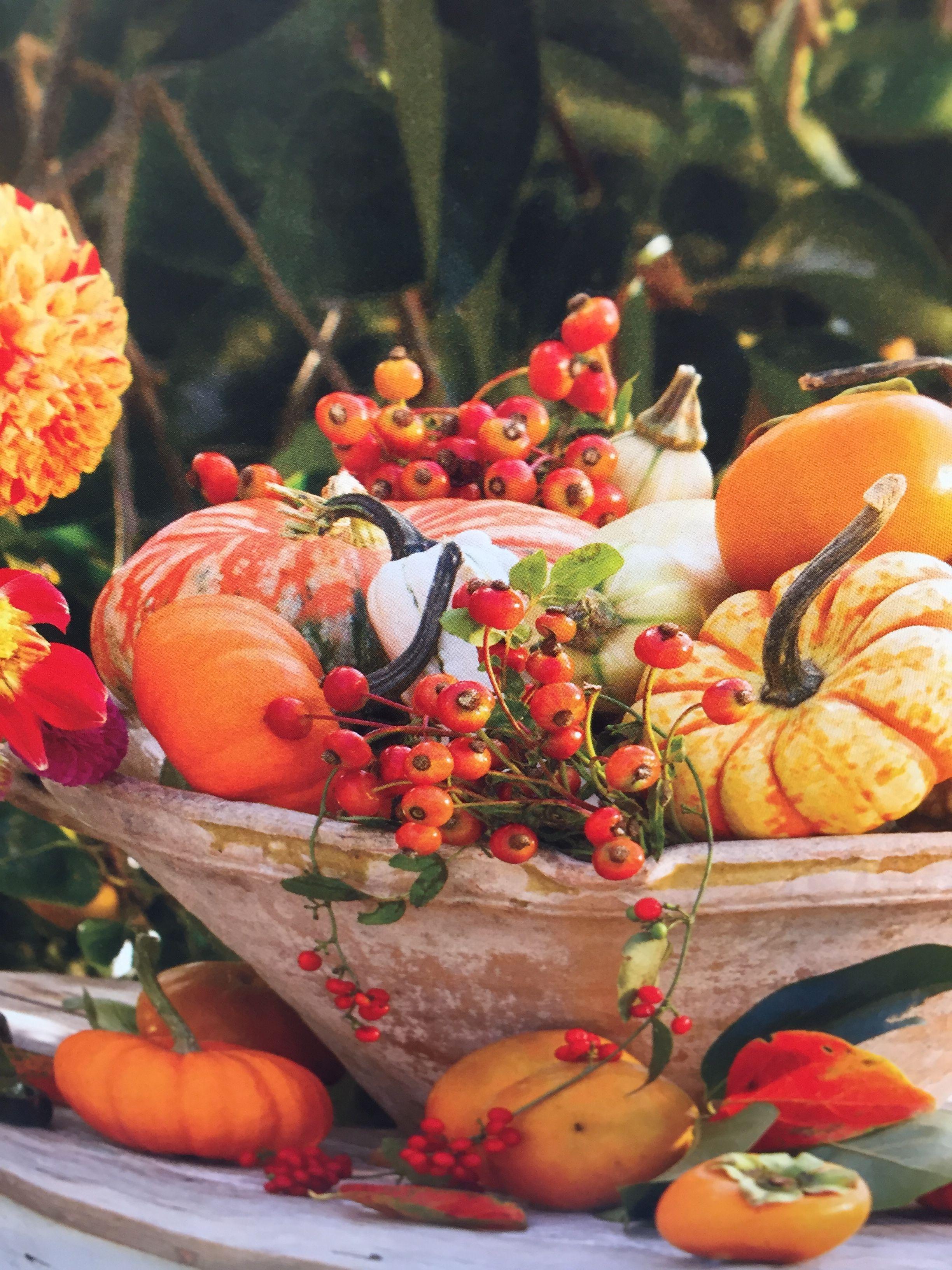Pin de linda thorson en fall pinterest altavistaventures Image collections