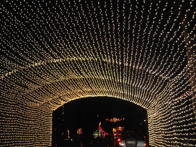 Holiday Lights At Griffith Park....walk Or Drive Through.