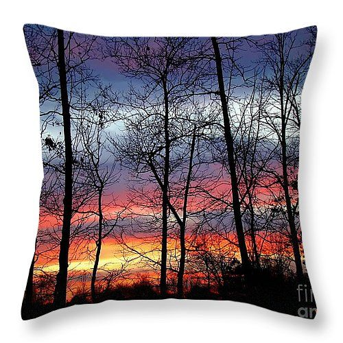 "Carolina Sunset 14"" x 14"" Throw Pillow by Sue Melvin.  Our throw pillows are made from 100% cotton fabric and add a stylish statement to any room.  Pillows are available in sizes from 14"" x 14"" up to 26"" x 26"".  Each pillow is printed on both sides (same image) and includes a concealed zipper and removable insert (if selected) for easy cleaning."