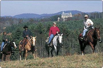 Visit Biltmore - Outdoor Activities - Horseback Riding | The