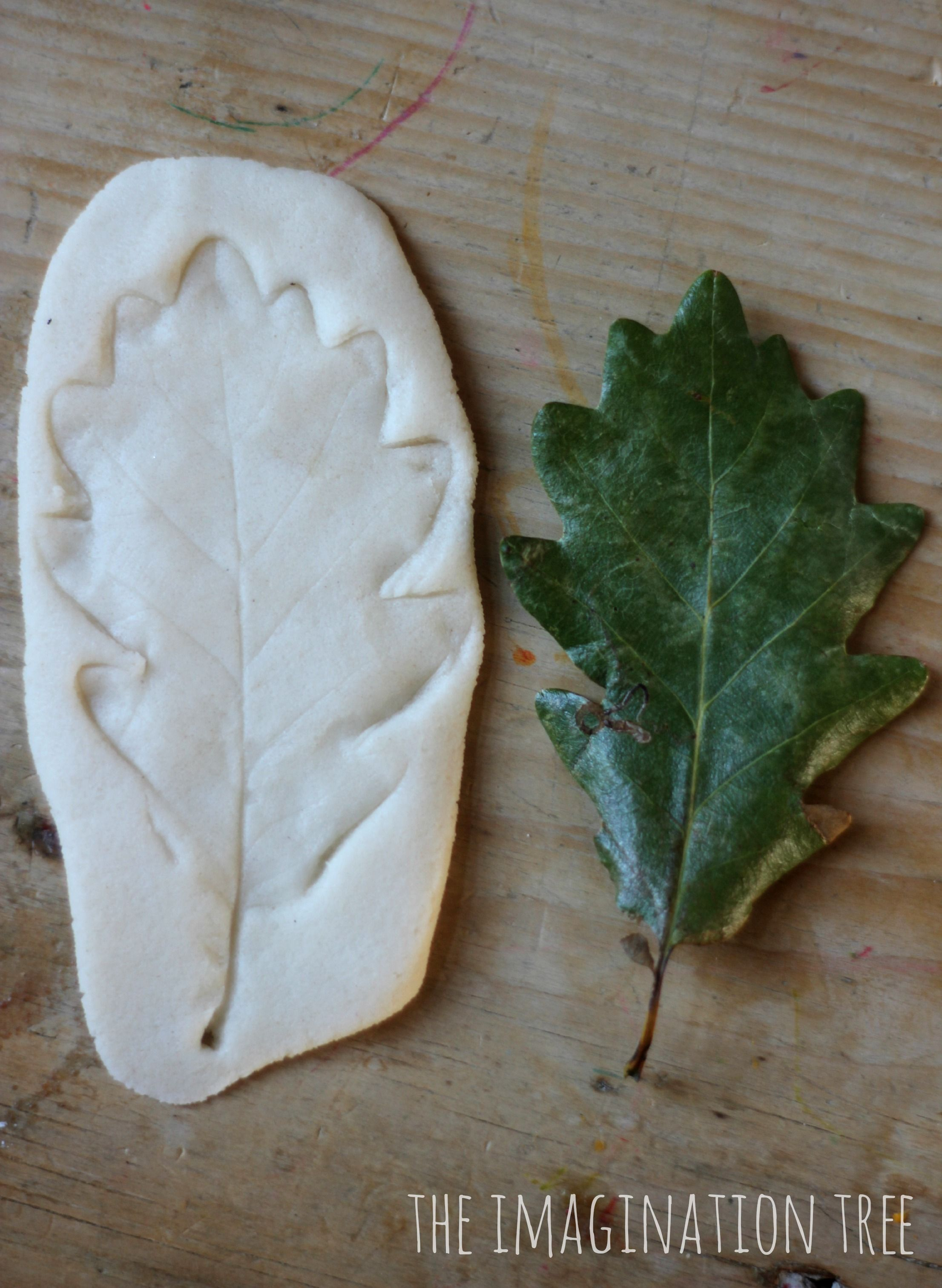 Coloured Salt Dough Leaf Impressions