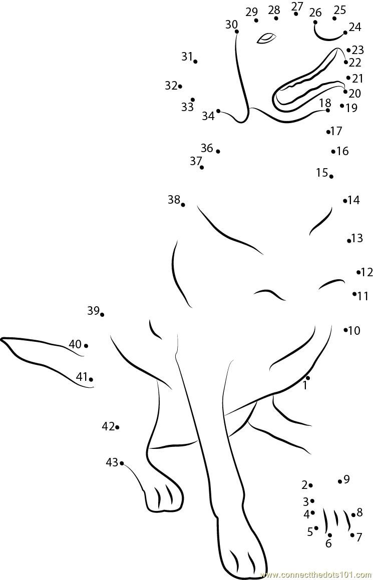 Labrador Retriever Connect Dots Dots Labrador Retriever Coloring Pages [ 1159 x 745 Pixel ]