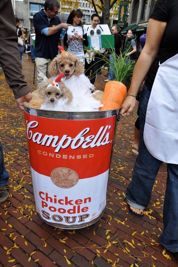 Halloween Pet Parade Pet Parade Pet Halloween Costumes Dog