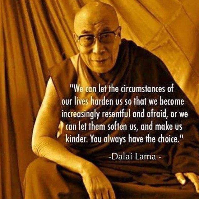 The Dali Lama When Life Gives You Lemonades It S Your Choice To