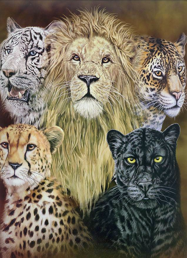 The 5 Big Cats Korean mink blanket is part of our Signature ...