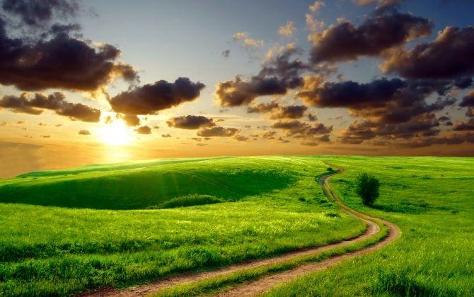 Закат над красивым полем