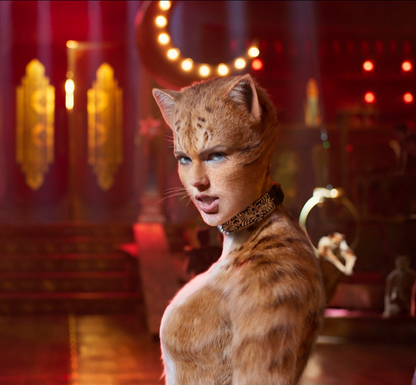 The Funniest Cats Movie Reviews As Critics And Fans Savage New Film With Images Taylor Swift Cat Cat Movie Cats Musical