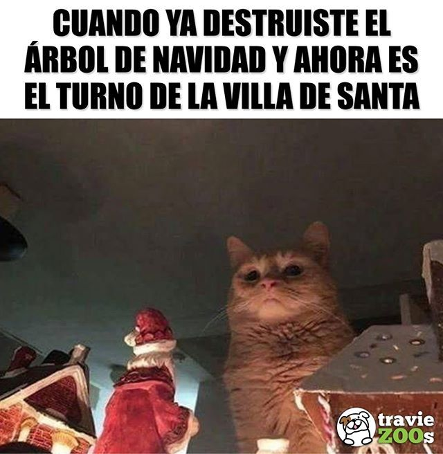 Cada Vez Falta Menos Navidad Memes Chistosisimos Memes Graciosos Memes Divertidos