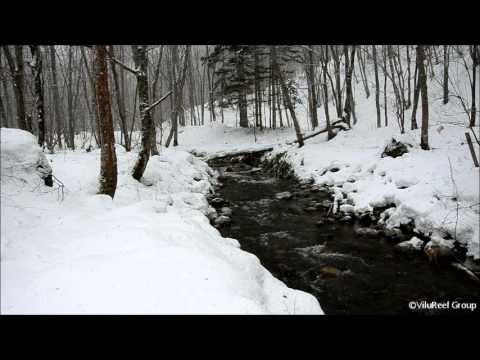 Snowstorm River 60 min/Nature Sounds Winter | Video's for