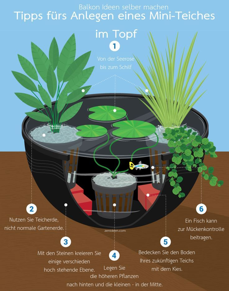 Photo of Make balcony ideas yourself: A mini pond in a pot – #garden