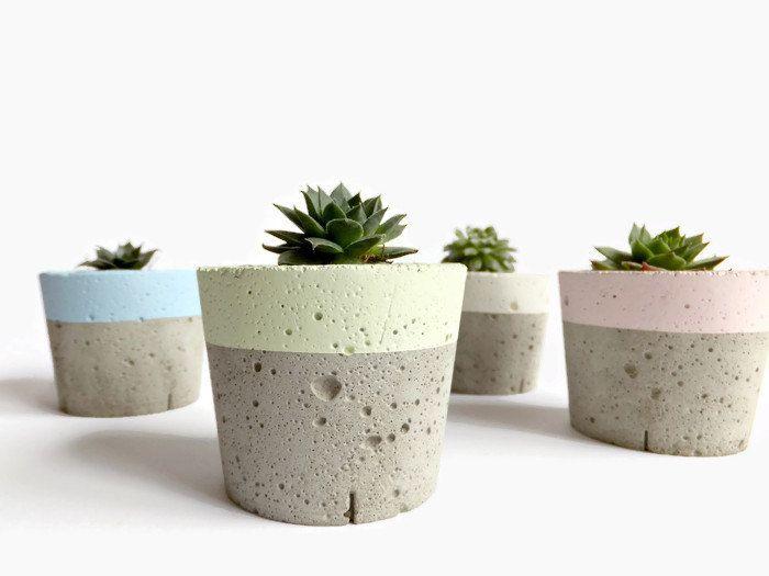 Pastel Concrete Mini Planter For Succulent Cactus Home Decor Modern Small  Planter. Modern PlantersConcrete ...