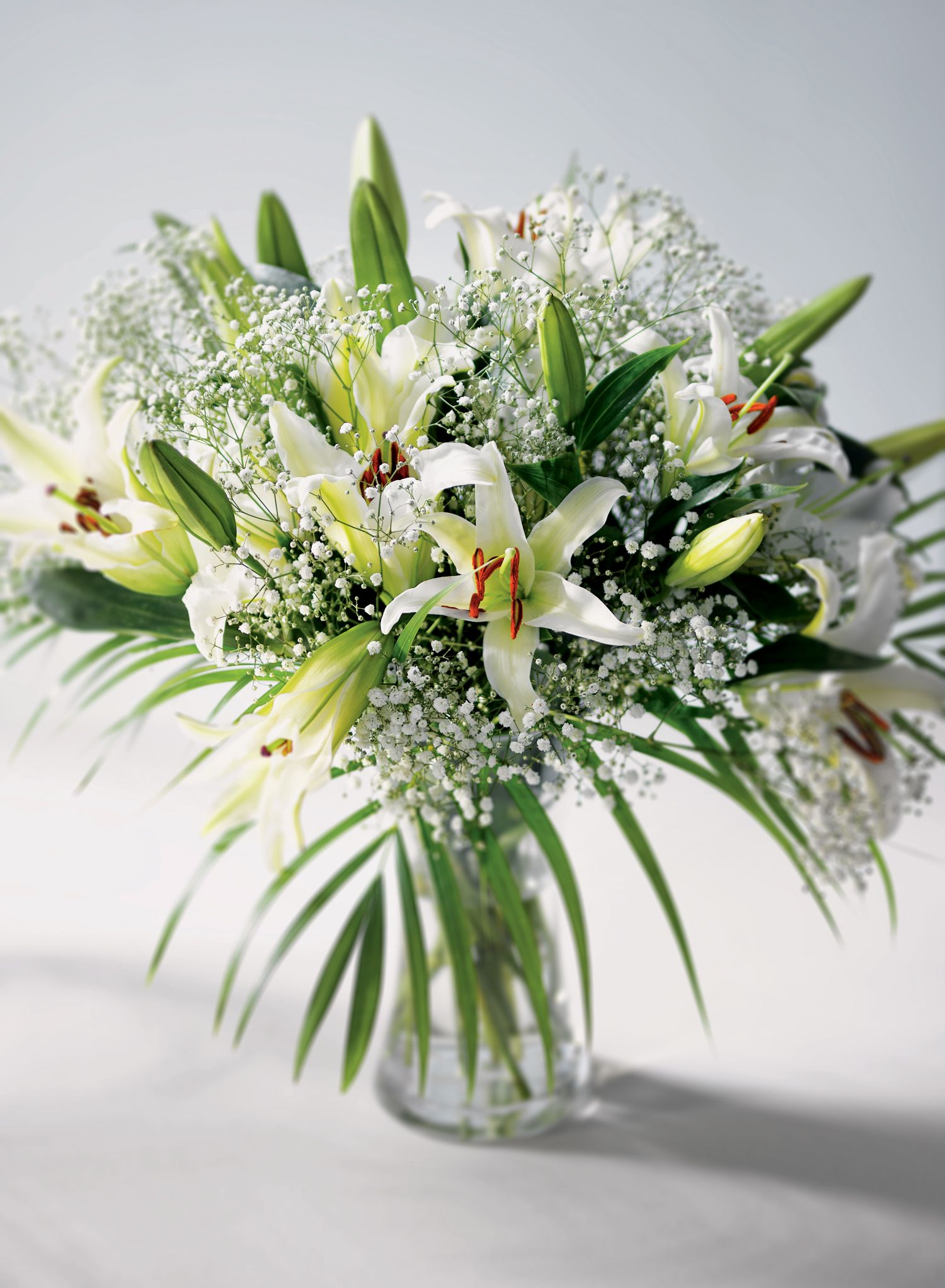 Ch 18 Oh Christian Theyre Beautiful I Love Lilies These Are