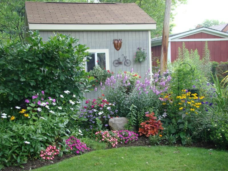 View of backyard from house yard is divided right side for Flower designs for yards
