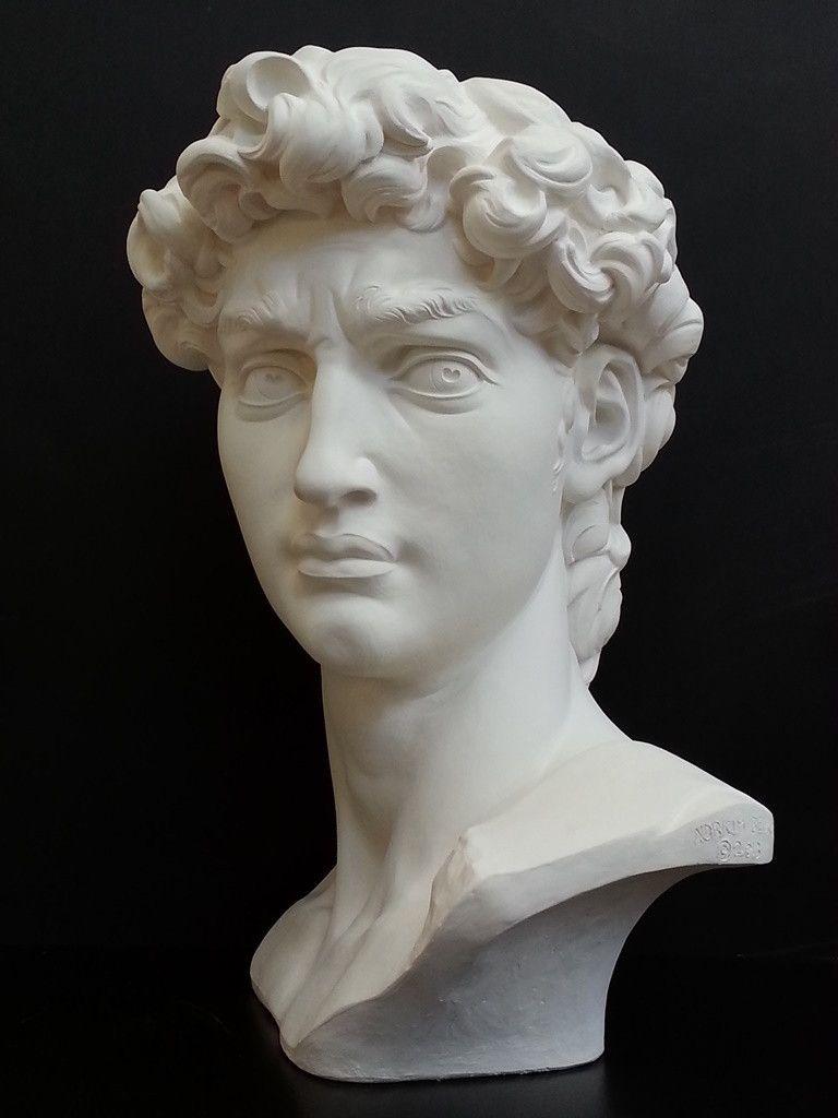 David Reduction Bust Item 96 Bust Sculpture Roman Sculpture Sculpture