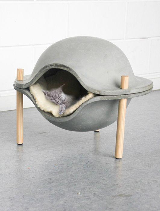 Cozy in Concrete