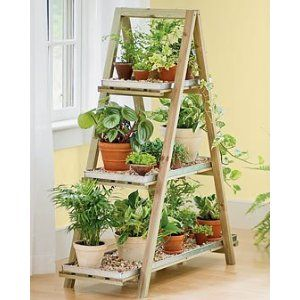Indoor Plant Storage For Winter