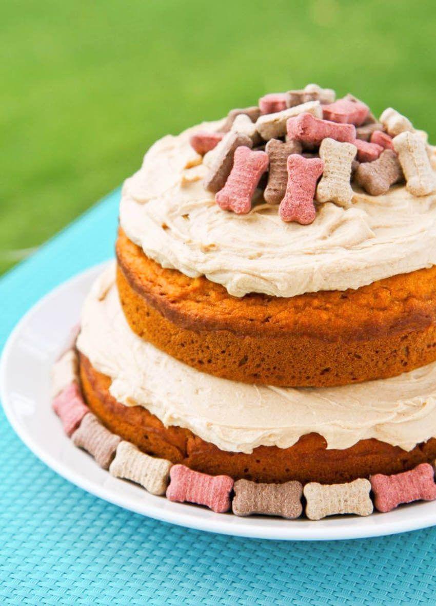 Dog Pumpkin And Apple Cake