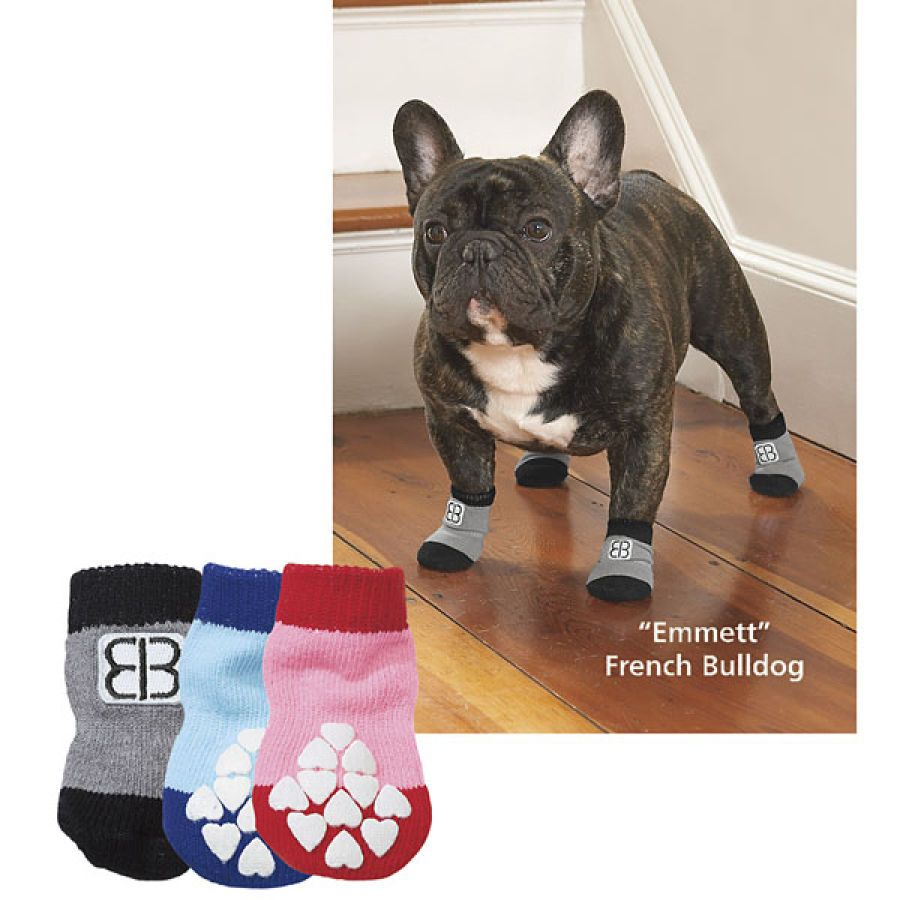 Set of 8 Traction Control Socks - Dog Beds, Dog Harnesses and Collars, Dog Clothes and Gifts for Dog Lovers | In The Company Of Dogs