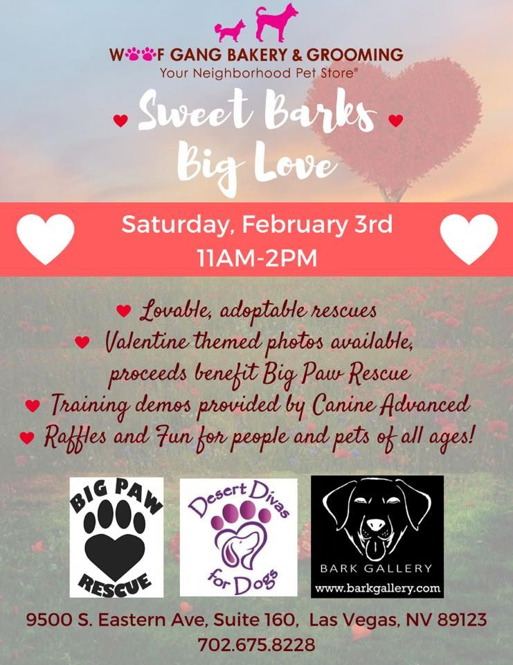 It S Not To Early To Share The Love Happy Valentine S Day Pet Photo Shoot Cupid Is Here Lovable Adoptable Hea Animal Photoshoot Paws Rescue Pet Grooming