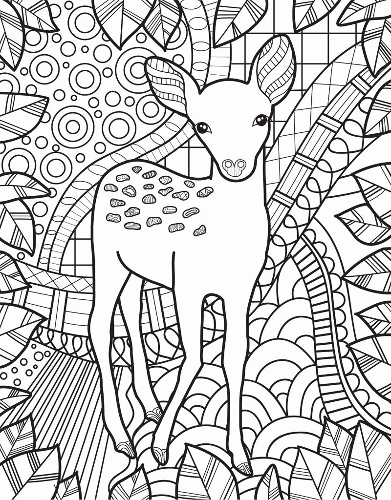 Coloring book with animals inspirational zendoodle