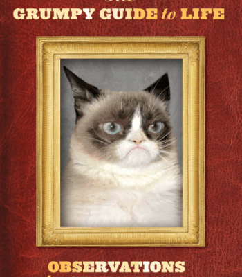 CatsInAnimatedFilms Refferal 2598330225 Grumpy cat